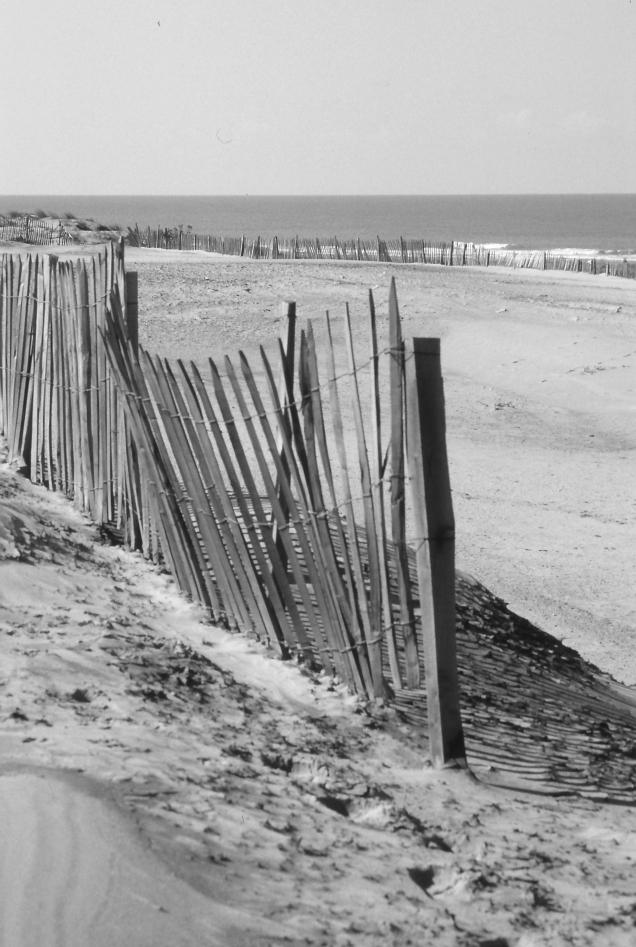 Les piquets de la plage de Soulac_2