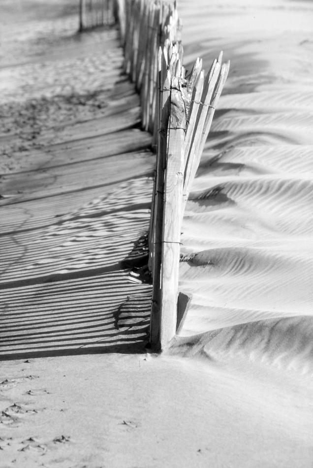 La plage de Soulac, ses piquets